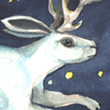 Jackalope Dream - 2007