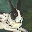 Spotted Bunny - 2006